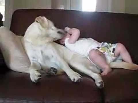Funny baby Playing With Doggy