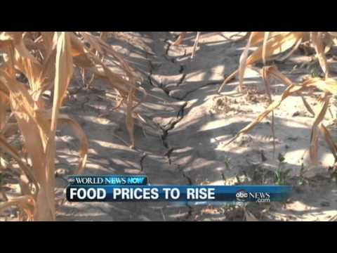 WEBCAST: Food Prices to Rise