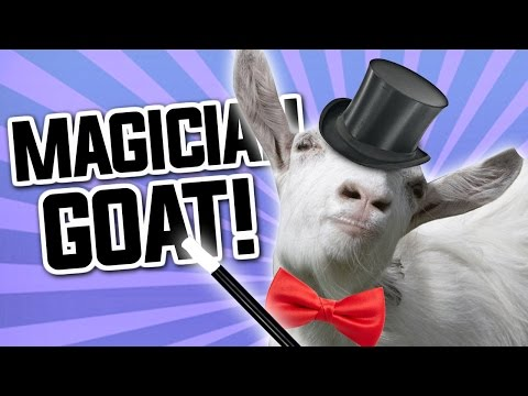 MAGICIAN GOAT – Goat MMO – Part 5 / END