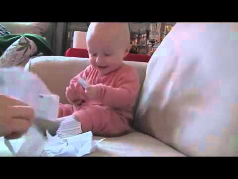 Funny Video – Baby Laughing Hysterically – Funny Baby