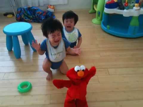 Twin babies crying and screaming when Elmo shakes!