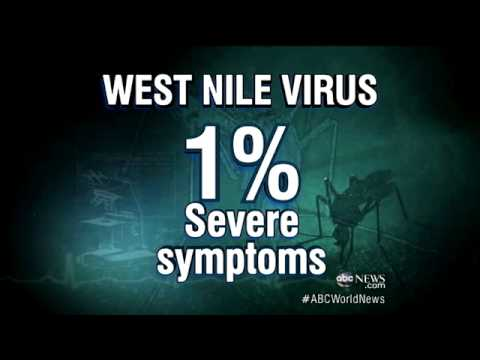 West Nile Virus: 47 States Exposed