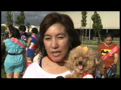 Superhero Dogs! Owners and their pets compete in Philippines dog show