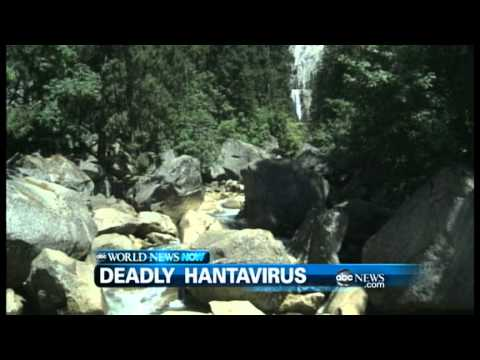 WEBCAST: Hantavirus at Yosemite National Park