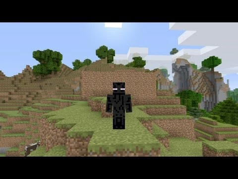 Minecraft – Skin Pack 2 DLC