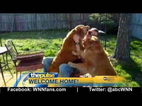 Three Dogs Welcome Home Marine