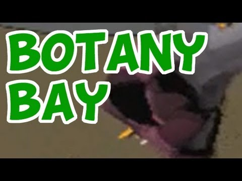 RuneScape Botany Bay – How Detectable are Bots?