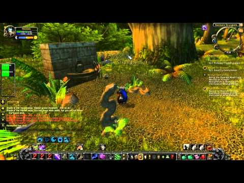 Warcraft – Zul Gurub Quests 2: Burn and salt the bodies! And then escape (or not)!