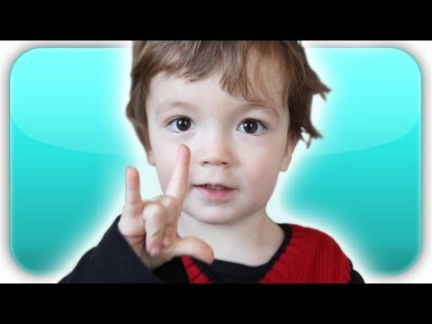 Baby's First Words! (The Baby Book)