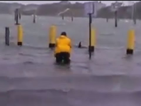 Superstorm Sandy: Man takes to the waters … as a shark