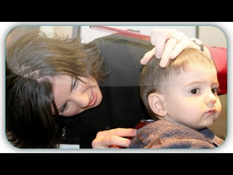 The Baby Book – Tips and Tricks to Cutting Your Child's Hair (The Baby Book)