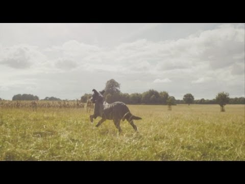Fenton the Dog video spoofed in HD ad for new 4G network EE