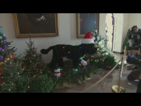 First Dog Bo at centre of White House holiday decorations