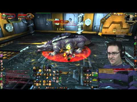 Hobbs the Brawler ~ Rank 1, 1st Fight Lets Play World of Warcraft Mists of Pandaria MoP WoW