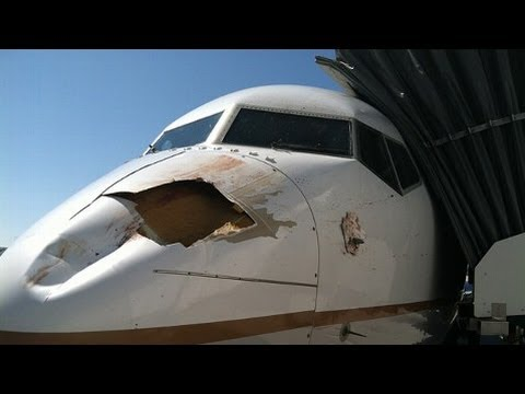 Bird Strike Leaves Gaping Hole in Plane