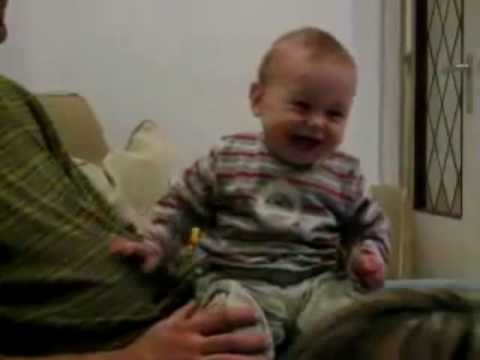 funniest ever laughing baby montage