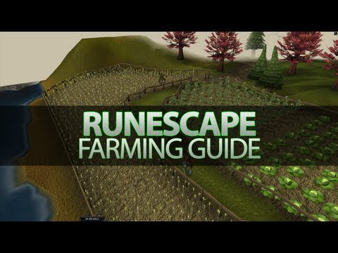 RuneScape Skill Guides – 1-99 Farming Guide – Calculators – Cheap