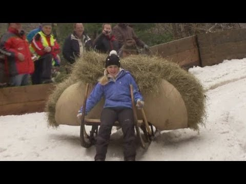 German thrill-seekers take part in horn sledging competition